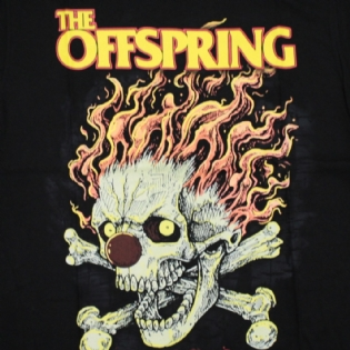 The Offspring - Coming For You